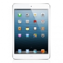 Apple iPad mini Cellular 16 GB